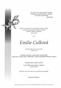 Nejbližší rozloučení - Emilie Culková