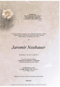 Jaromír Neubauer