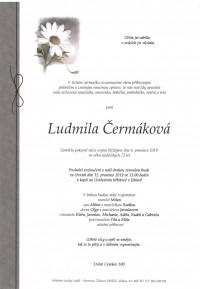Nejbližší rozloučení - Ludmila Čermáková